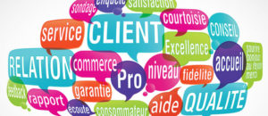 satisfaction clients hardy coaching